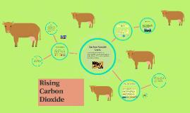 Rising Carbon Dioxide