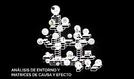 ANALISIS DE ENTORNO Y MATRIZ DE CAUSA Y EFECTO