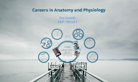 Careers in Anatomy and Physiology