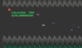 CALICATAS TIPO SCHLUMBERGER