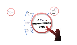 Recombinant DNA Review