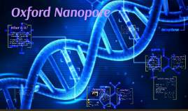 Oxford Nanopre