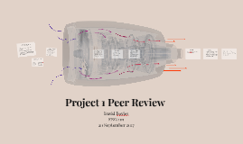 Project 1 Peer Review