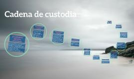 Copy of Cadena de custodia