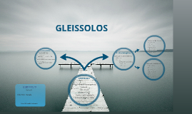 Copy of GLEISSOLO