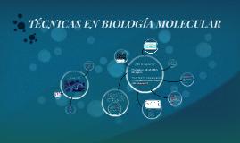 TÉCNICAS EN BIOLOGÍA MOLECULAR