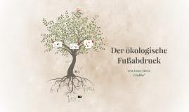 Copy of Der ökologische Fußabdruck