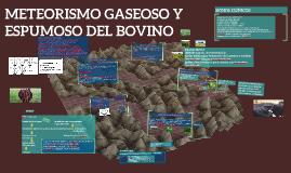 METEORISMO GASEOSO Y ESPUMOSO DEL BOVINO