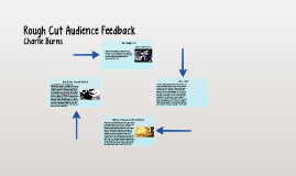 Rough Cut Audience Feedback