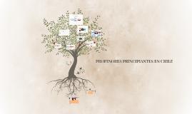 Copy of DIMENSIONES INDIVIDUALES, RELACIONALES EN LA RESILIENCIA DE