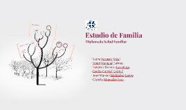 Estudio Familia - Diplomado