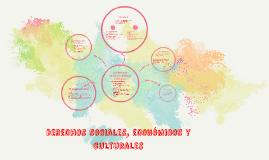 Copy of Los derechos sociales
