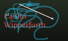 Caitlin Wipperfurth