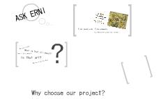 Ask Erni - Introduction