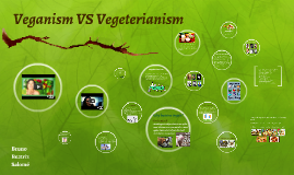 Vegan VS Vegeterianism