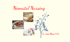 Copy of Neonatal Nurse