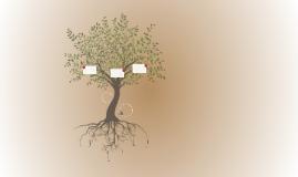 Genealogy Project