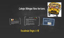 Colegio Bilingue New Horizons