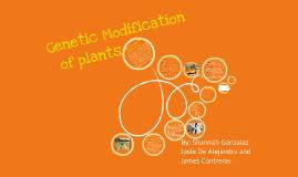Genetic Modification of plants