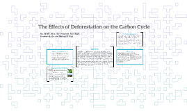 The Effects of Deforestation on the Carbon Cycle