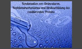 Kondensation von Aminosäuren, Reaktionsmechanismus und Strukturbildung des resultierenden Proteins