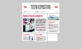 Copy of TEXTO EXPOSITIVO