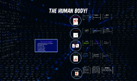 The human body!!!!