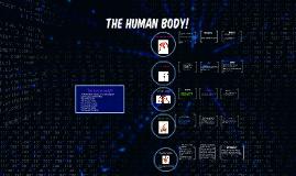 The human body!!!!
