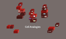 Cell Analogies