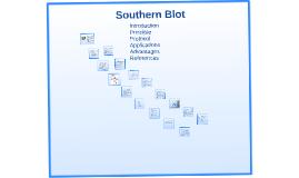Copy of Southern Blot