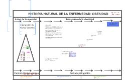 Copy of HISTORIA NATURAL DE LA ENFERMEDAD: OBESIDAD