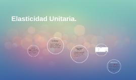 Elasticidad Unitaria.