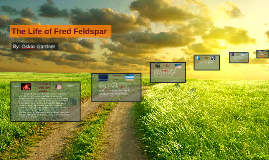 The Life of Fred Feldspar