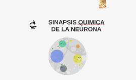 SINAPSIS QUIMICA DE LA NEURONA