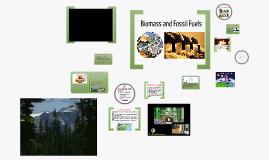 Copy of Renewable Energy: Solid Biomass