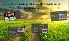 Copy of Raza Barzona