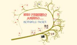 Aniversário 1º aninho - Bernardo