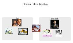 Obama Likes/ Dislikes