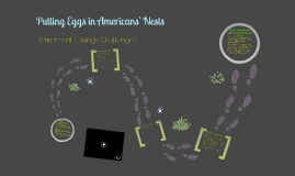 Putting Eggs in Americans' Nests