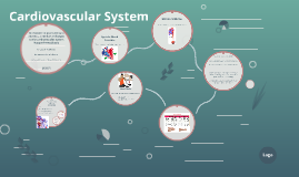 Copy of Cardiovascular System Lesson 1
