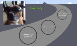 Identity and Persona