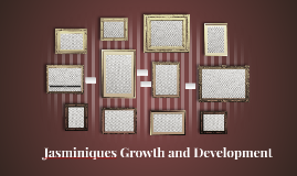 Jasminiques Growth and Development