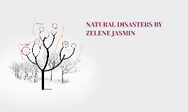 NATURAL DISASTERS BY ZELENE JASMIN