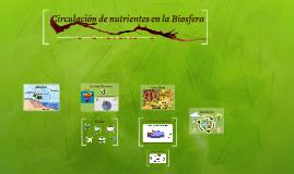 Circulación de nutrientes en la Biosfera