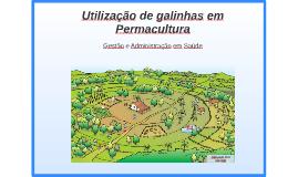 Utilização de galinhas em Permacultura