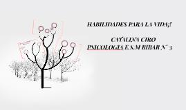 HABILIDADES PARA LA VIDA¡!