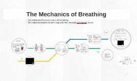 The Mechanics of Breathing