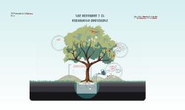 Los recursos y el desarrollo sostenible