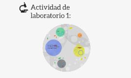 Actividad de laboratorio 1: Composicion porcentual en masa d
