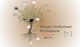 Primary Professional Development